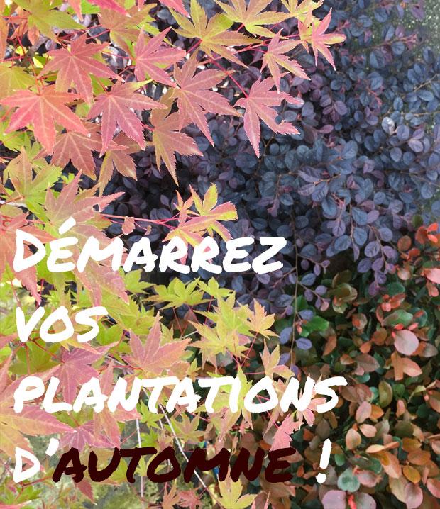 Pépinières & Jardinerie