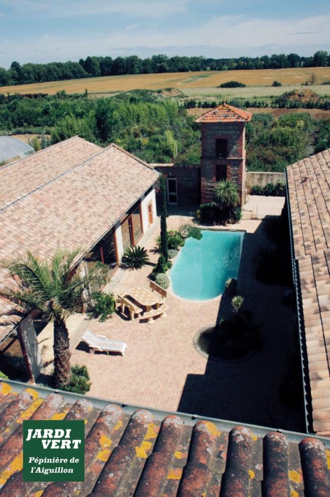 Construction d'une piscine avec terrasse, massifs et plantation de palmiers dans le cadre d'une rénovation de corps de ferme, à Frouzins