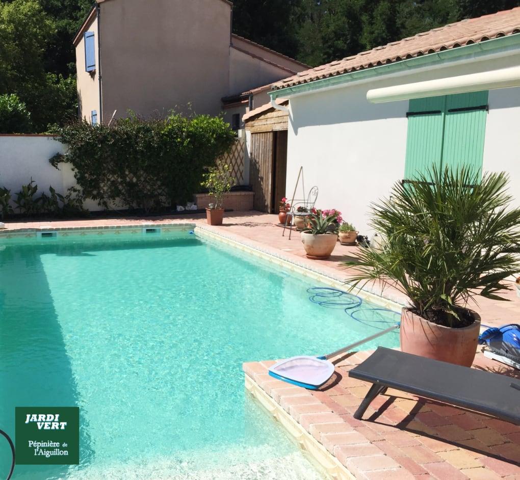 Réalisation d'une piscine avec terrasse à Colomiers