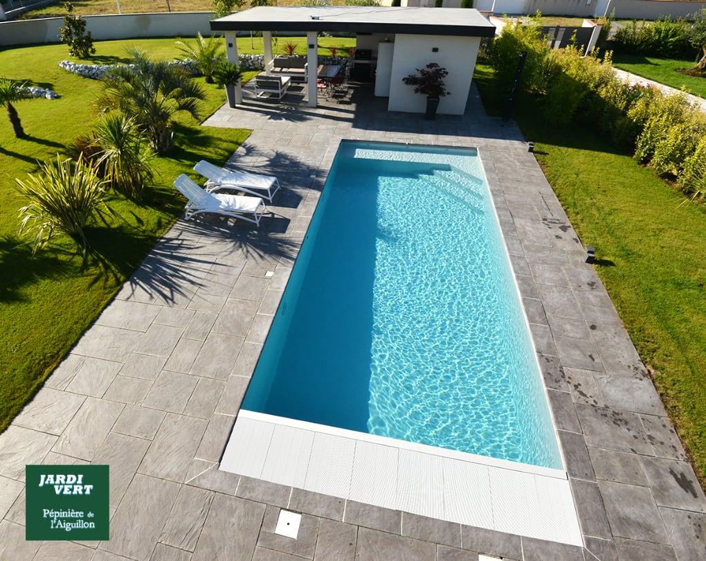 Réalisation d'une piscine, terrasse, pool-house, engazonnement et plantations de palmiers, à Fonsorbes