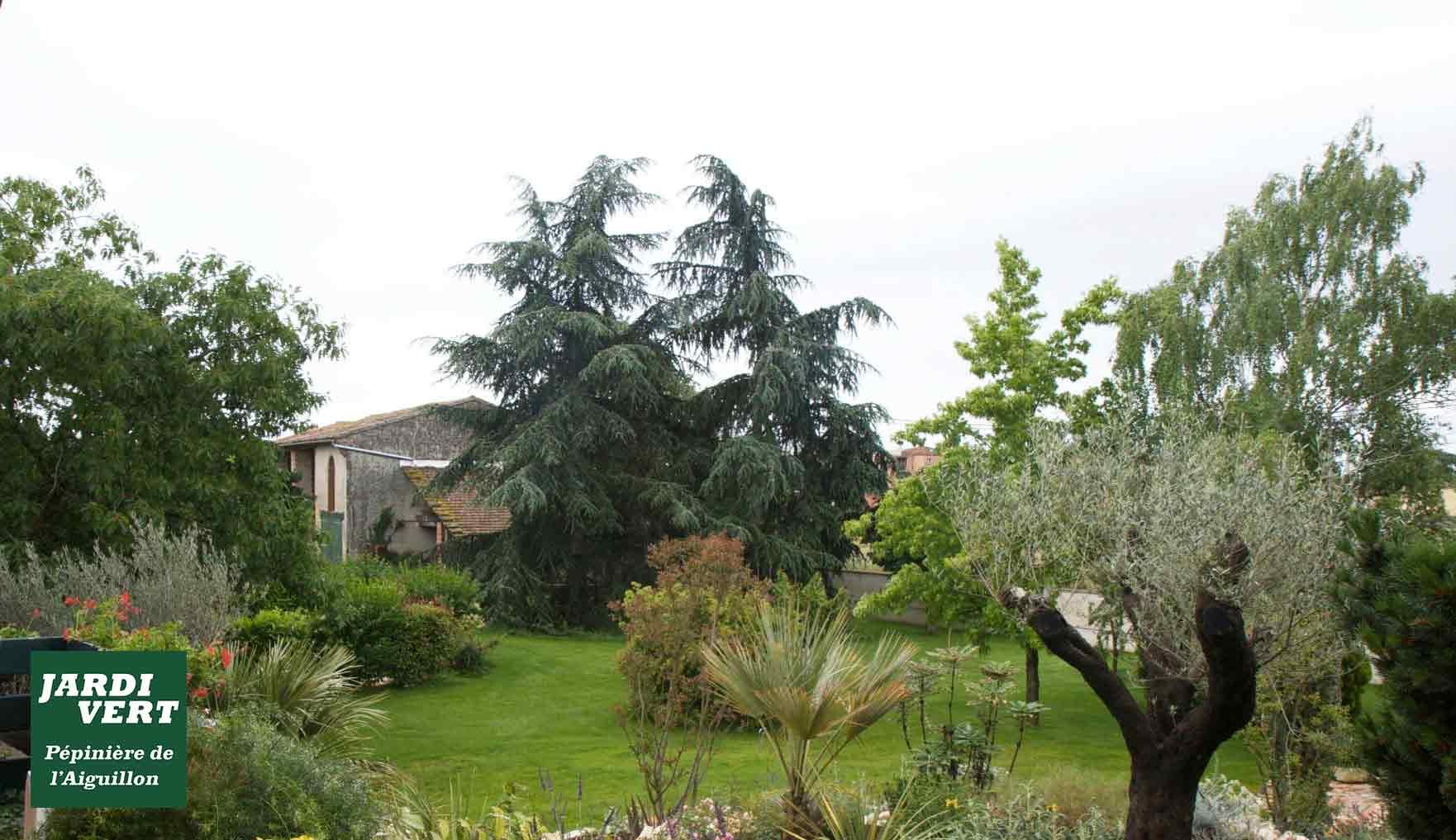 Aménagements de parcs et jardin, espaces verts pour les particuliers - Jardi Vert à Toulouse