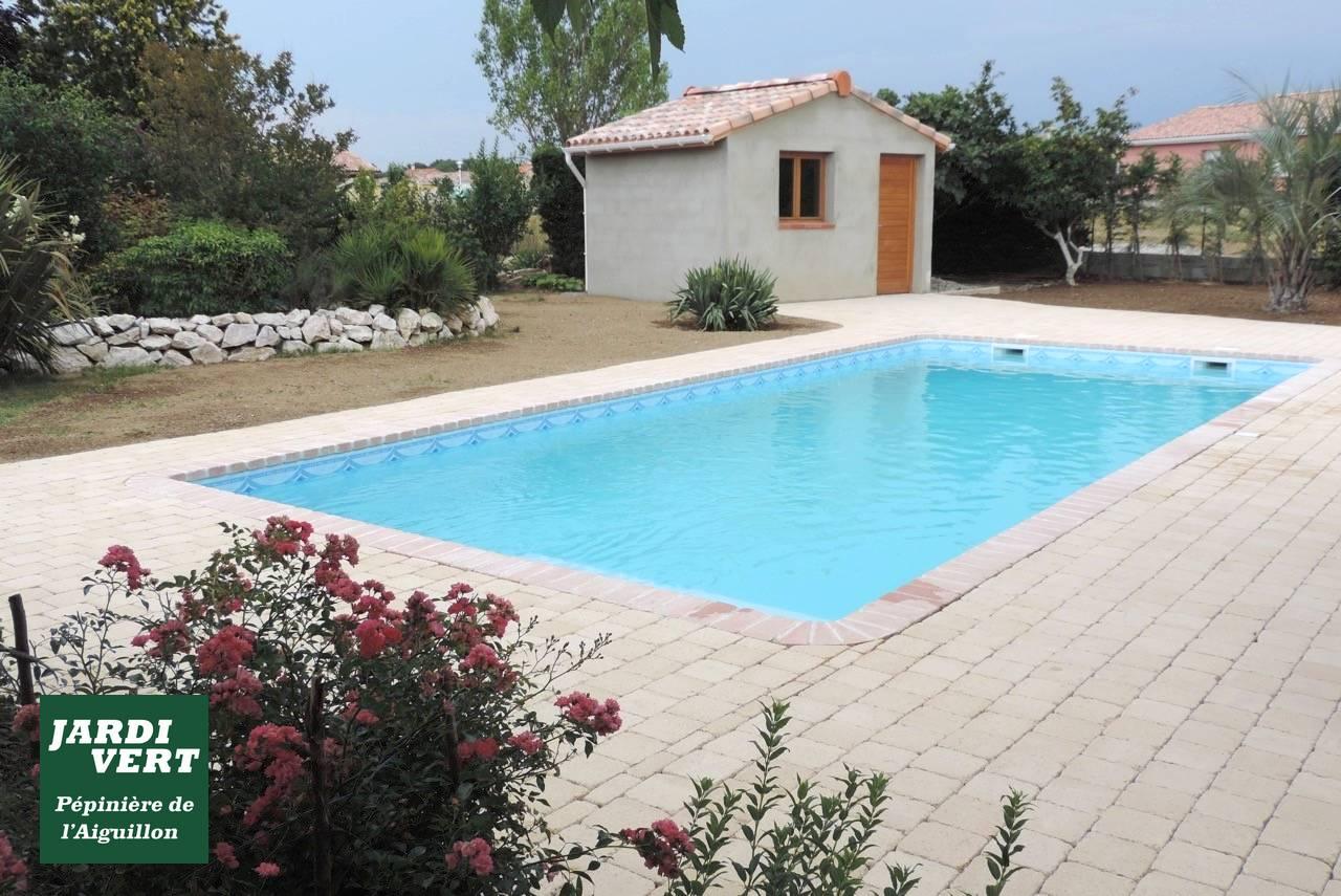Construction d'un pool-house, piscine et terrasse en dallage à Muret