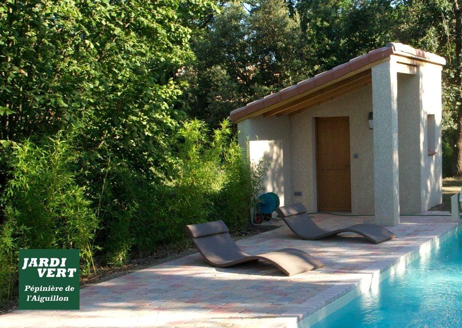 Construction d'un pool house, d'une piscine et de sa terrasse à Lamasquère