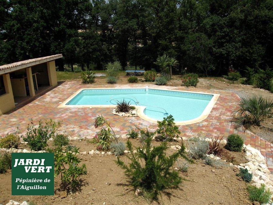 Réalisation de terrasses avec massifs de plantes, terrasses, pool-house et piscine à Toulouse Saint Simon