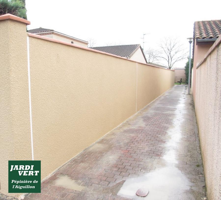 Réalisation de piliers et de murs de clôture, avec enduit et pose de brique foraine à Tournefeuille