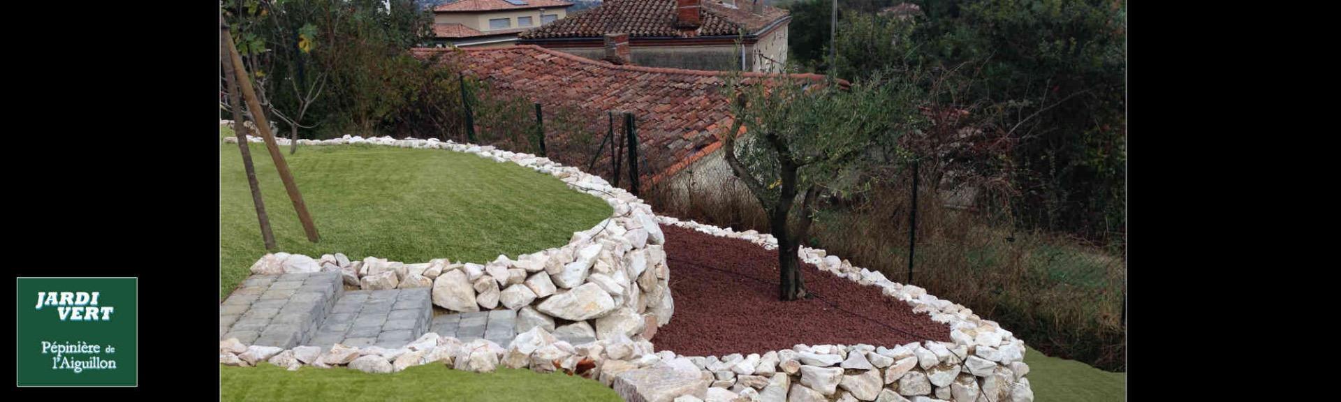 Vente et plantation d'olivier à Toulouse - Jardi Vert, pépinière de l'Aiguillon