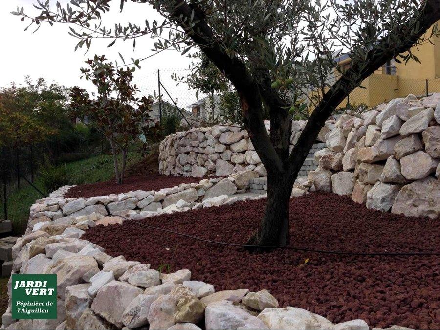 Création de murets de soutènements et massif en pierre sèche et pouzzolane autour d'un olivier à Goyrans
