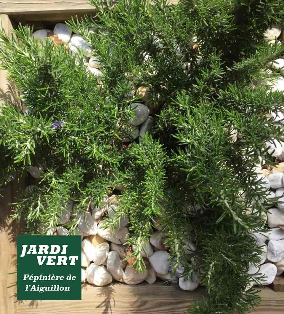 Vente de galet blanc pour pailler ses massifs et plantations au jardin - Jardinerie de l'Aiguillon Frouzins